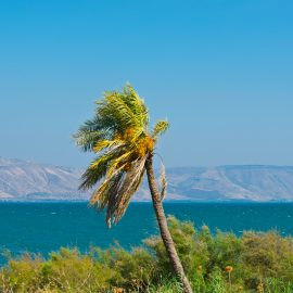 The North: From the Golan Heights to Haifa