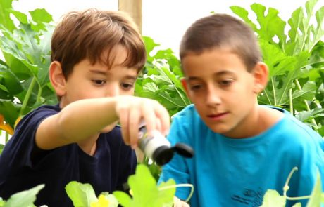 The Arava – From Agricultural Innovation to Educational Innovation