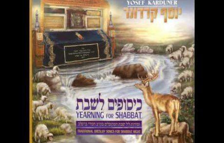 Yosef Karduner: Breslov Melody for Shalom Aleichem