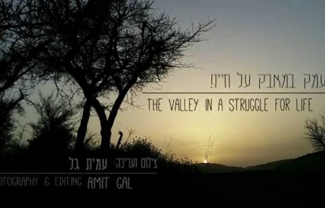 Views of the Ella Valley