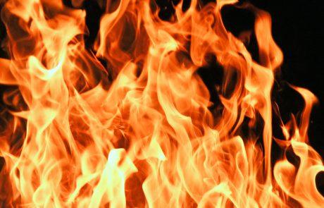 Biyur Chametz: Burning Chametz Before Passover