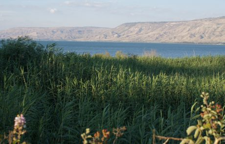 KKL-JNF: Moving Forward With the Galilee