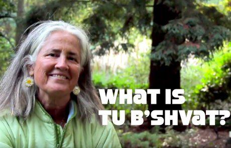 Tu B'Shvat: Celebrating the Spiritual & the Environmental